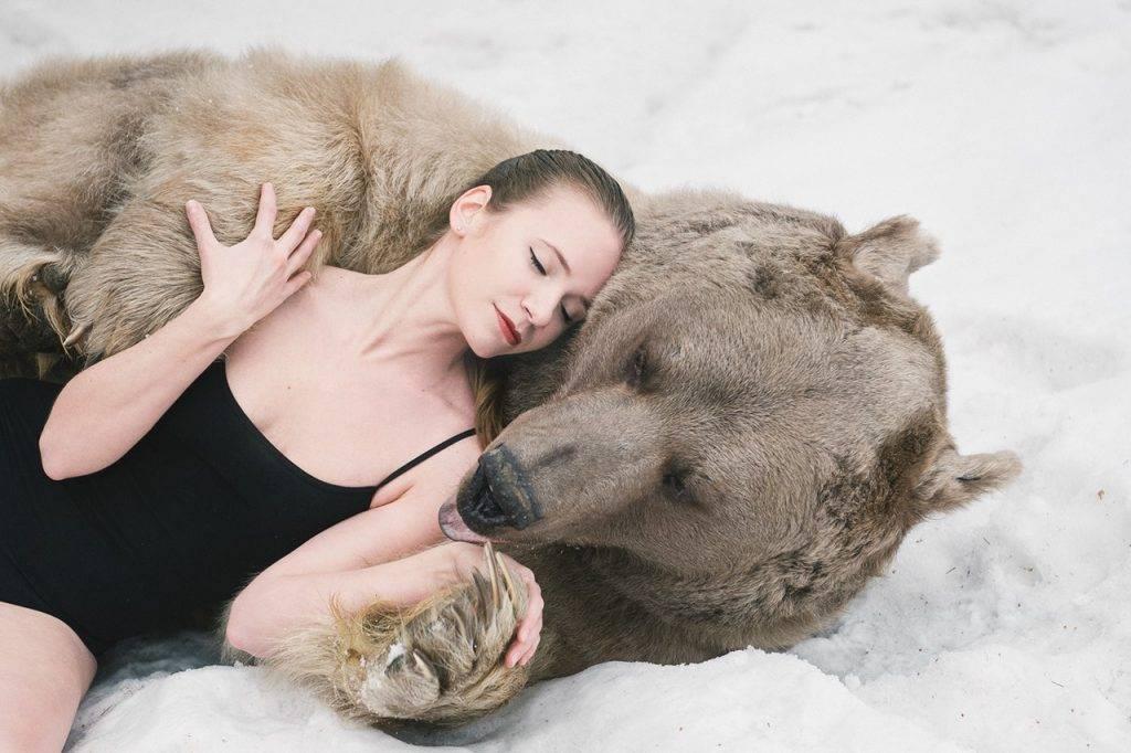 К чему снится медведь ????, который нападает: 4⃣5⃣ толкований по различным сонникам, приснился сон с нападающим бурым животным, нападение на меня или на другого человека