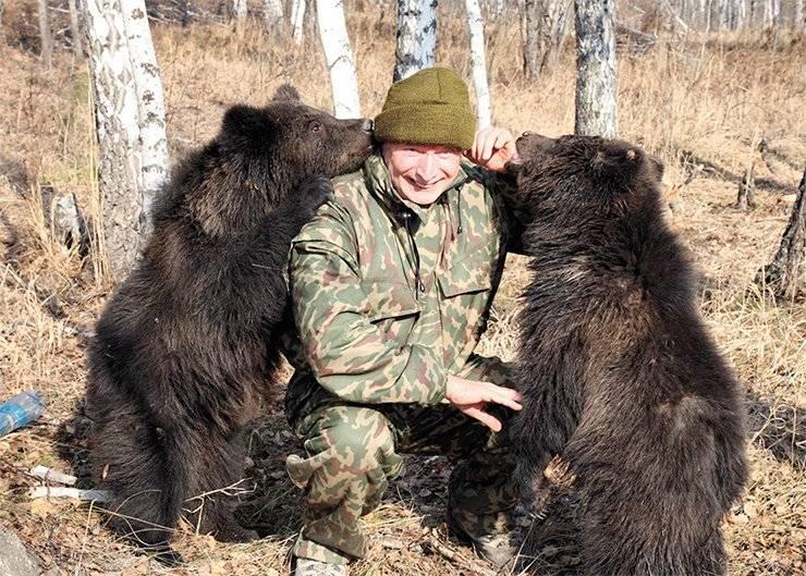 Медведь во сне — к чему снится мужчине и женщине
