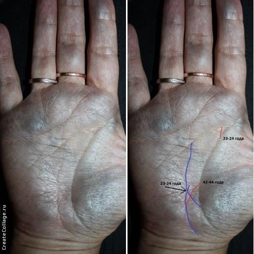 Линии детей на руке — примеры, фото с расшифровками (4 фото)