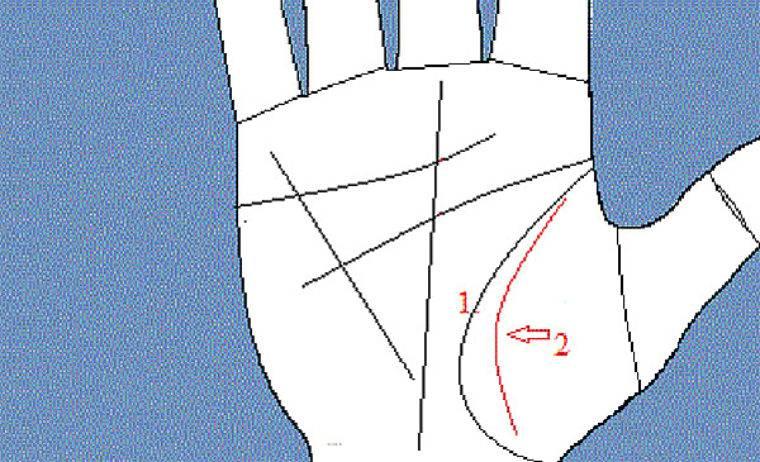 Что означает линия ангела хранителя (марса) на руке. о чем расскажет линия ангела хранителя на руке