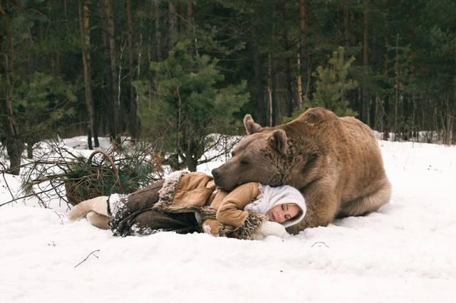 К чему снится медведь мужчинам и женщинам - правдивое толкование