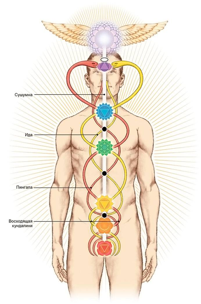 Чакры человека и их значение — 9 способов раскрытия