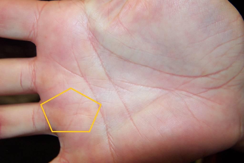 Необычные знаки: хиромантия, треугольник на ладони и его определение | узнай свою судьбу