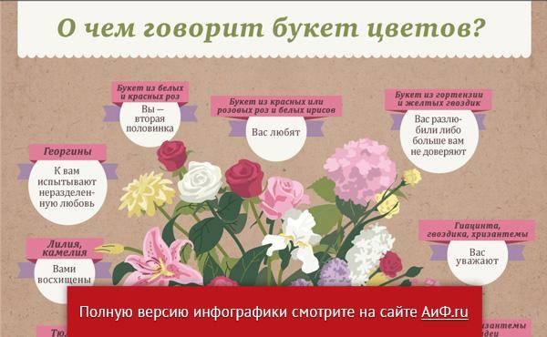 Количество роз в букете значение — о цветах