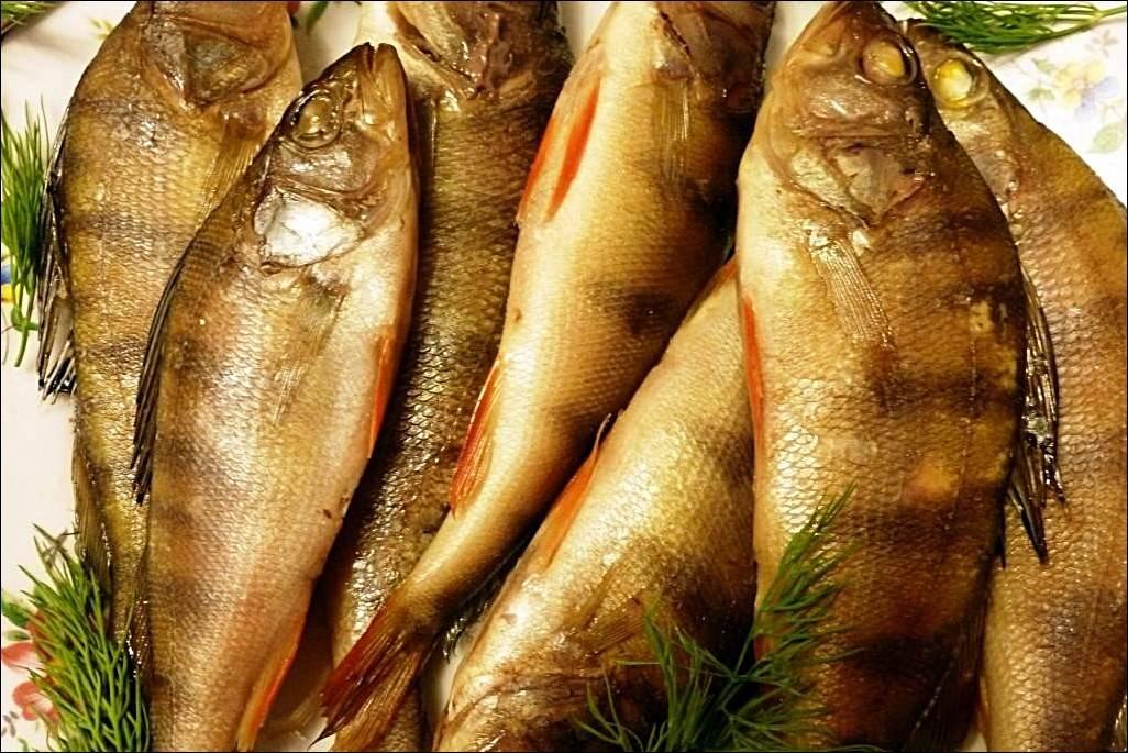 Сонник рыба соленая копченая