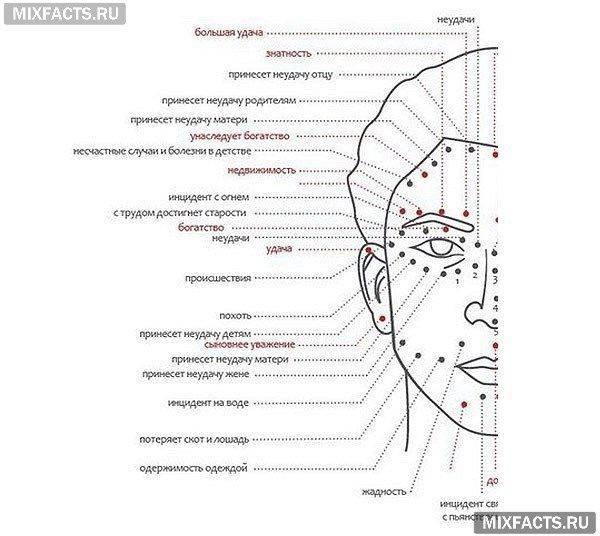 Значение родинок на теле у мужчин и женщин - народные приметы с описанием