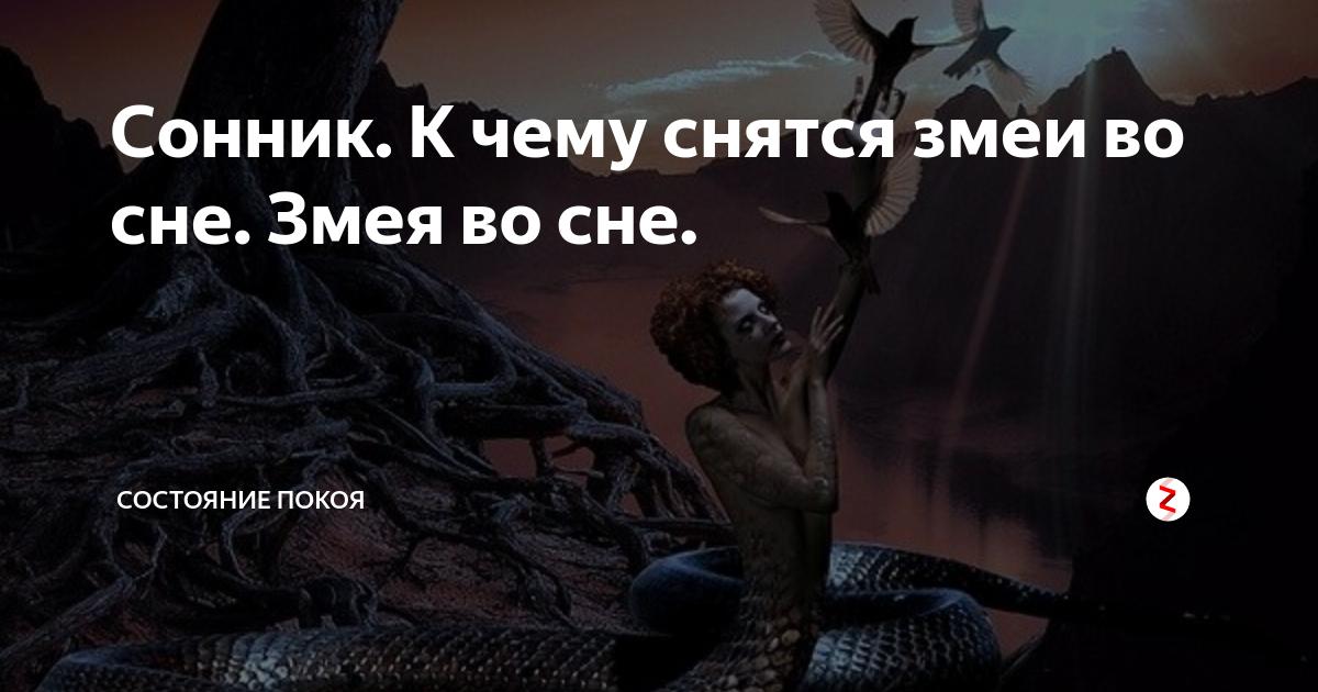 Сонник убить черную змею. к чему снится убить черную змею видеть во сне - сонник дома солнца