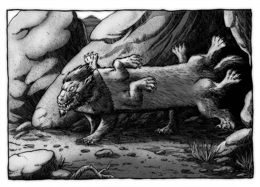 Лемуры | bestiary.us