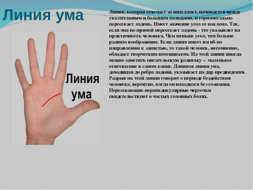 Линия ума на руке - фото с расшифровкой