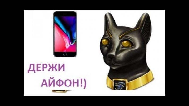 Вызывание египетского кота. как вызвать египетского кота днем и исполнить желание. подготовка к обряду в домашних условиях