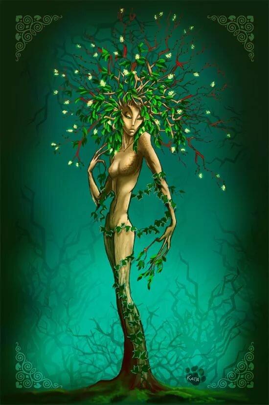 Дриада - это прекрасная нимфа и горный цветок. дриады — обитательницы священных рощ и лесов дриады были только в греции