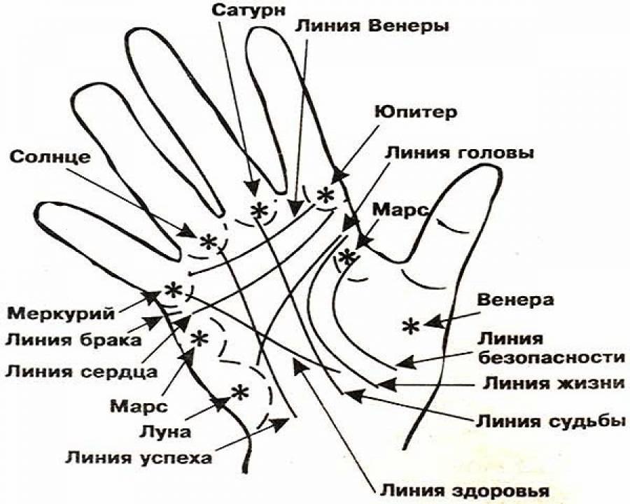 Хиромантия: линия здоровья меркурия на руке (на ладони)