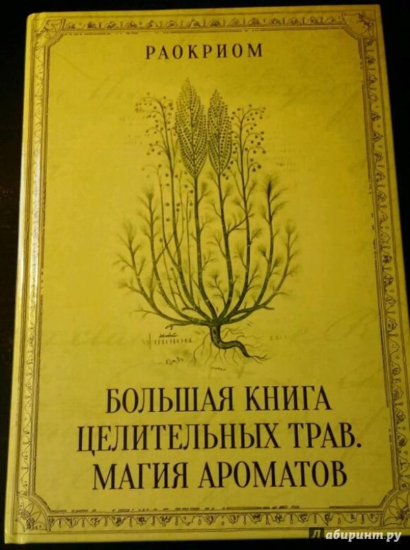 Живое дерево – лечебные свойства и противопоказания. живое дерево — лечебные свойства, вред и противопоказания