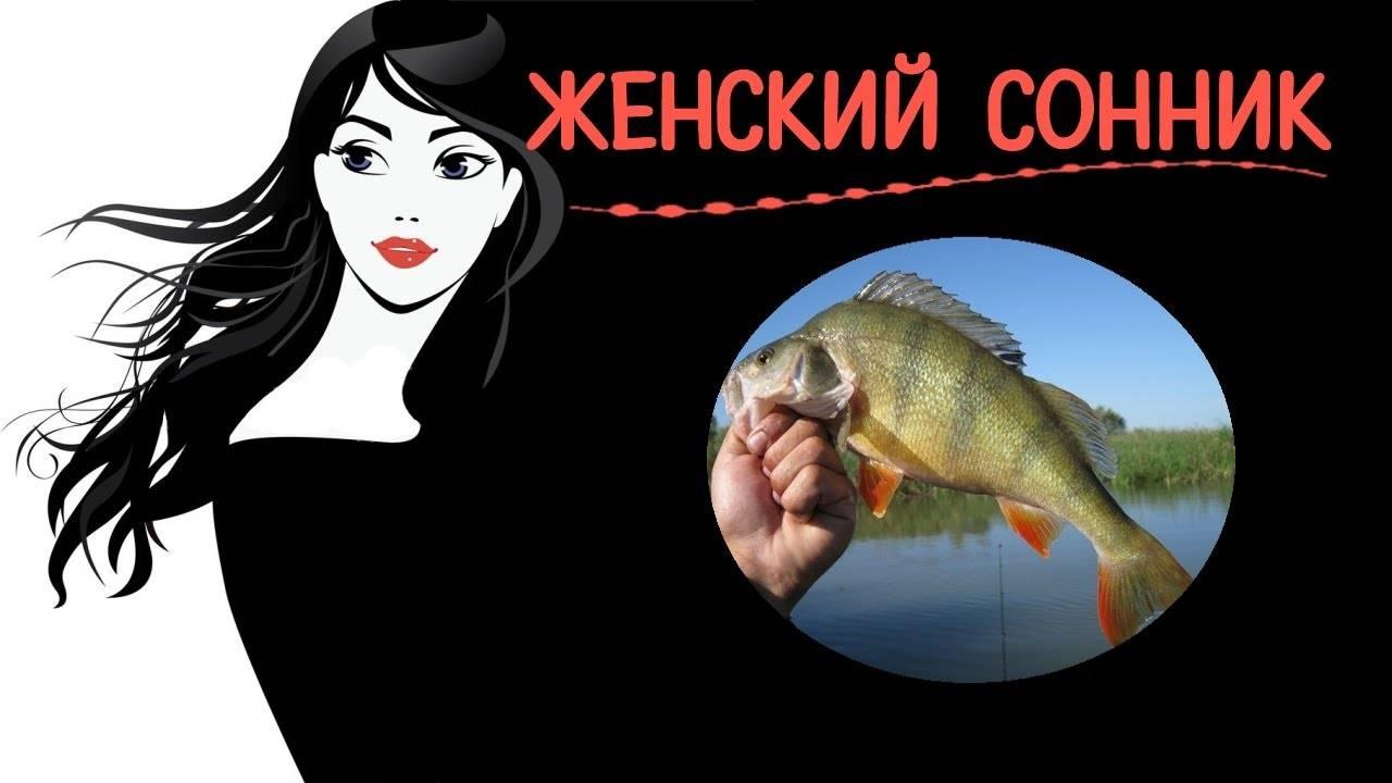 К чему снится мертвая рыба мужчине