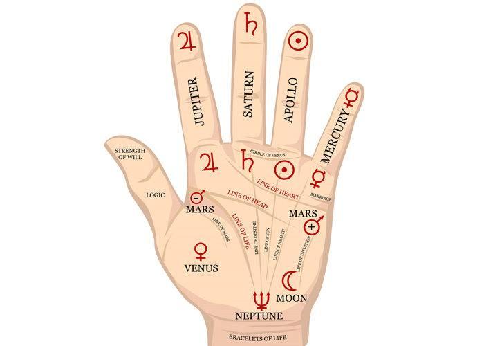 Что означает холм аполлона на руке человека