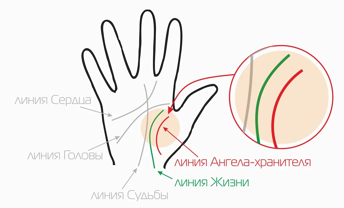 Линия марса на руке: значение в хиромантии