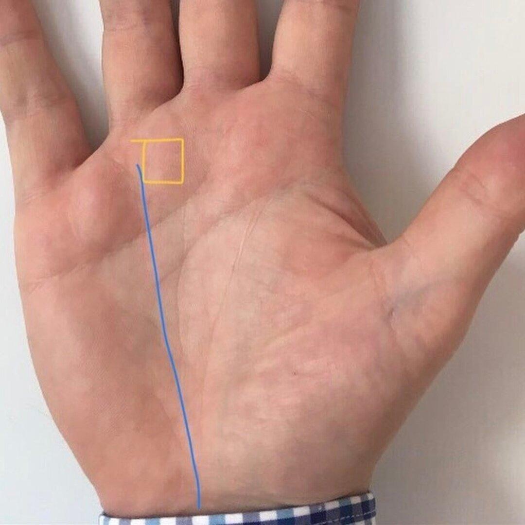Холм аполлона на руке человека