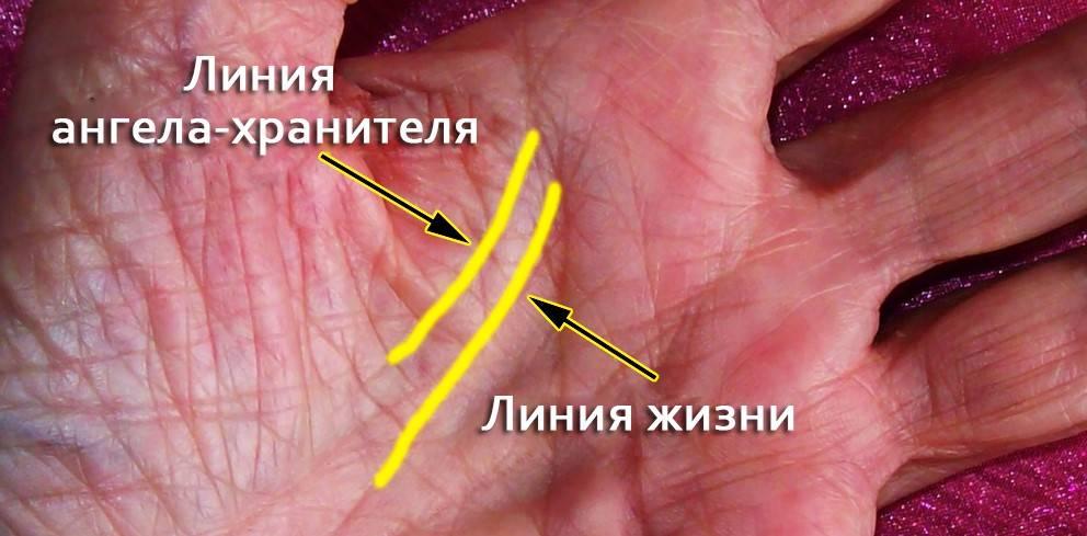 Значение линии ангела хранителя на ладони: хиромантия | zdavnews.ru