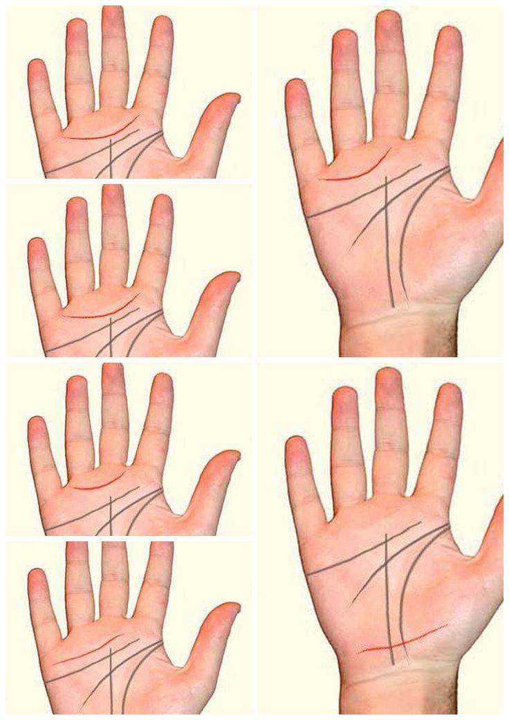 Хиромантия: пояс венеры на руке (кольцо венеры) - значение