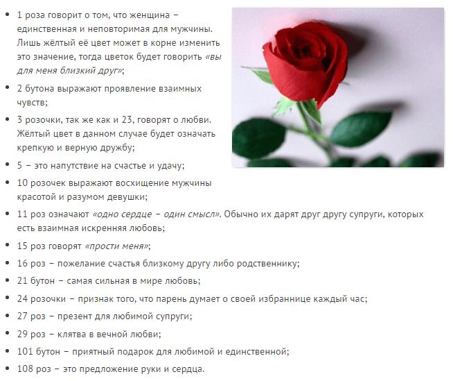 Что означает количество роз в букете, к чему дарят одну или три розы