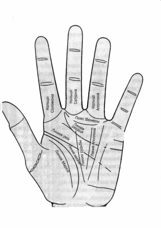 Что означают браслеты на запястье в хиромантии (5 фото + 2 видео) — нло мир интернет — журнал об нло