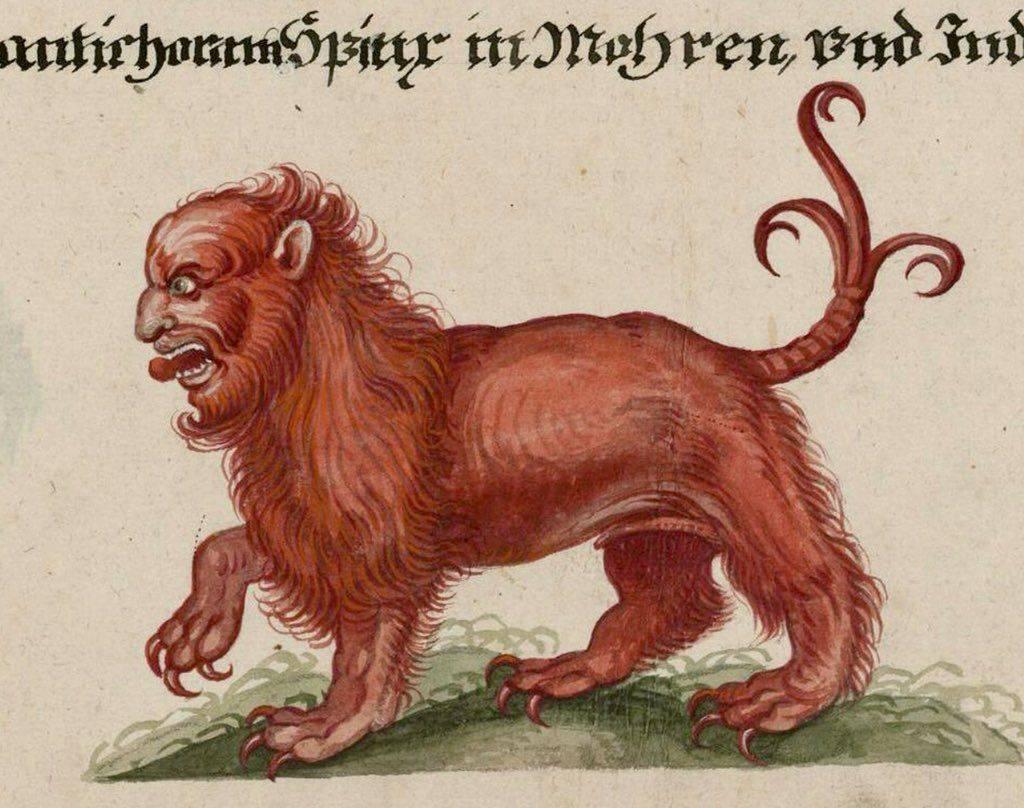 Мантикора — легендарное и непобедимое чудовище-людоед. мантикора в древней мифологии и современном мире какие виды мантикоры