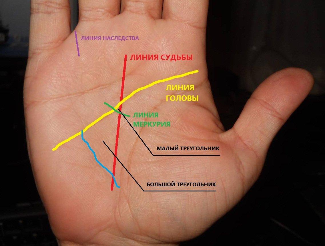 Линия денег на руке: фото с расшифровкой