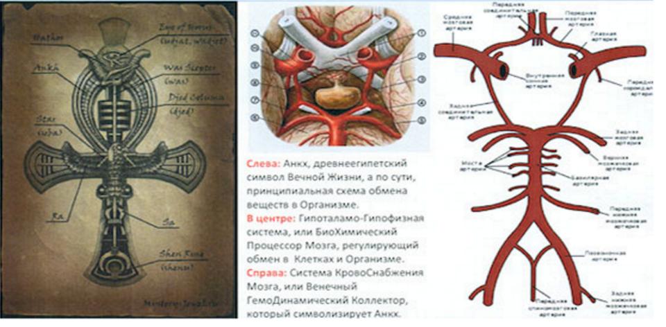 Анкх: египетский крест, его значение и свойства