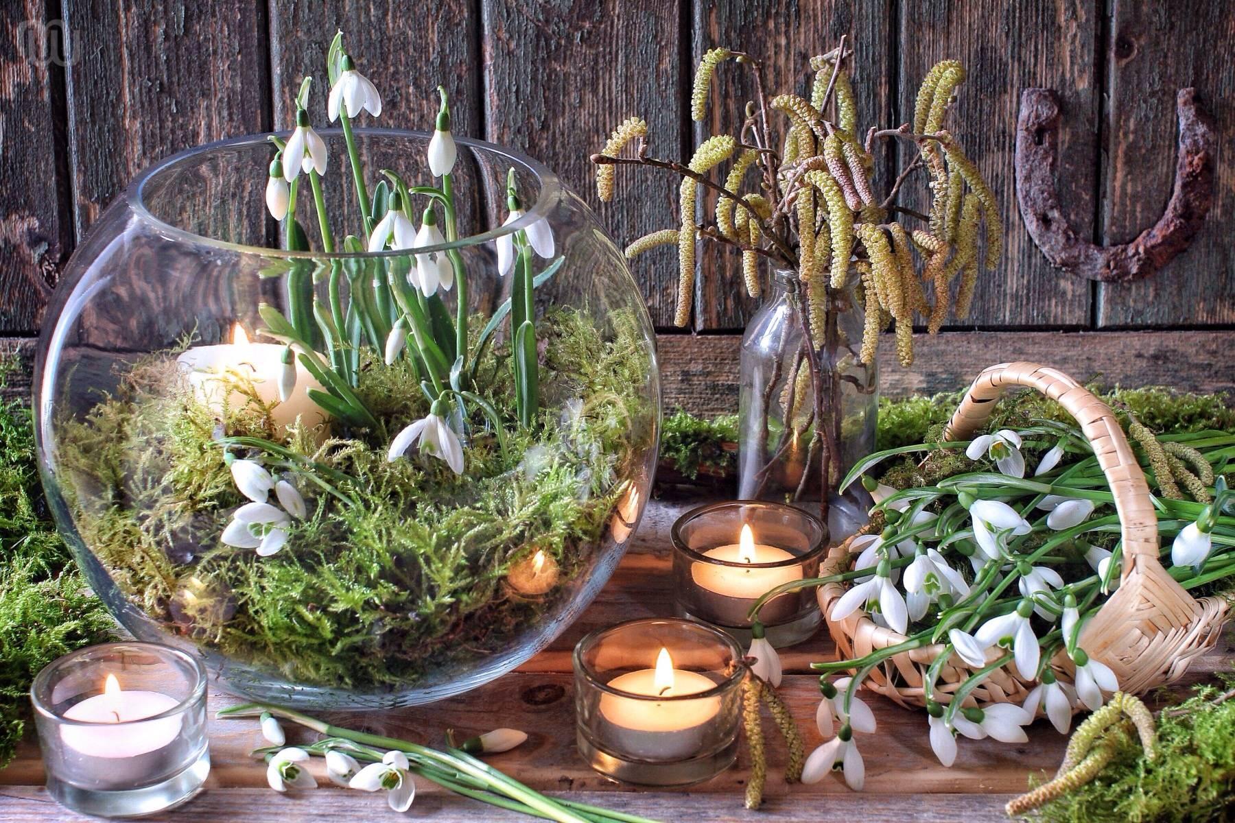 Символ одолень трава: значение оберега, легенда о растении