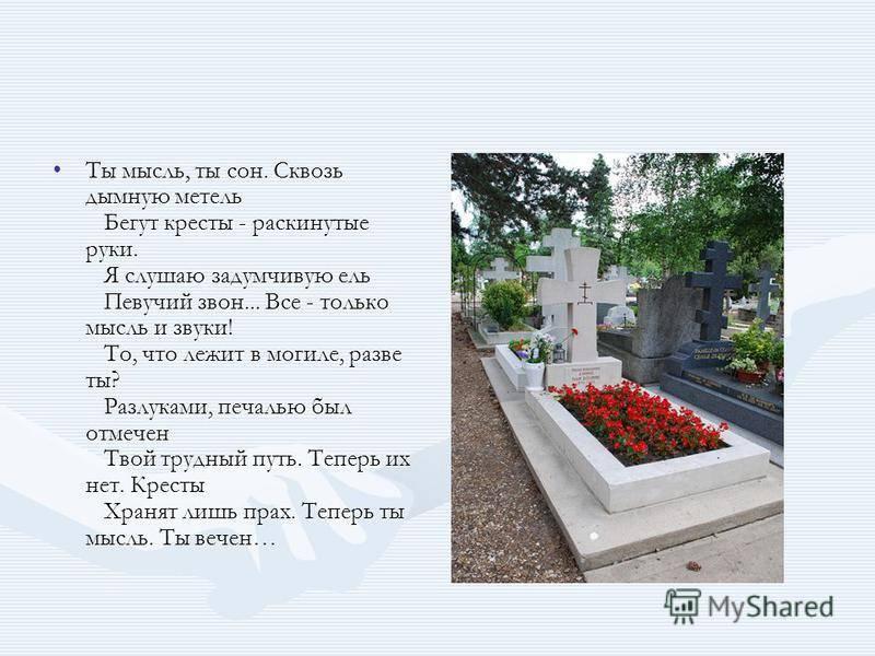 Приснилось кладбище: что это значит? — нло мир интернет — журнал об нло