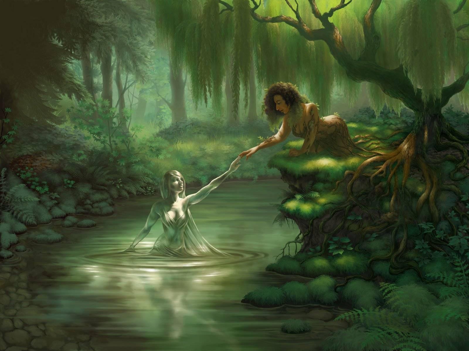 Холмы фей | fairy tail wiki | fandom