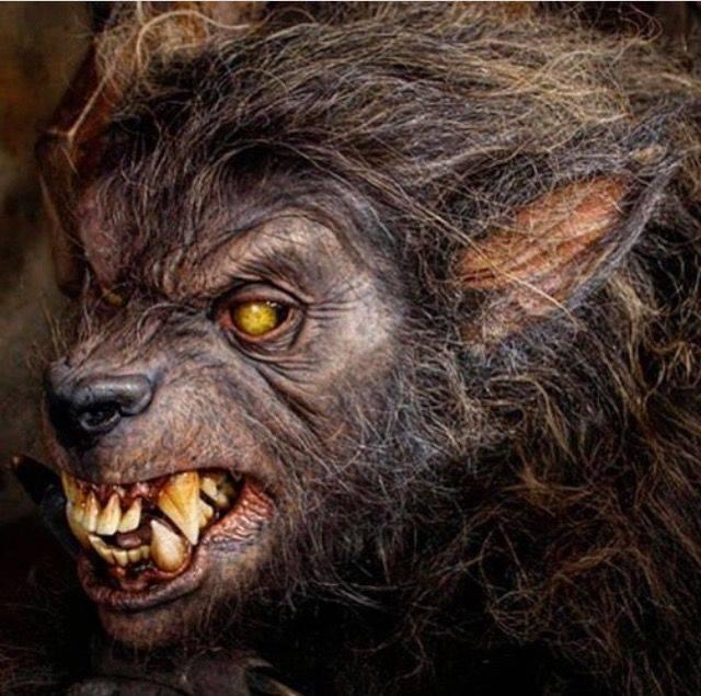 Как стать оборотнем в реальной жизни и обрести силу зверя (2 фото + видео) — нло мир интернет — журнал об нло