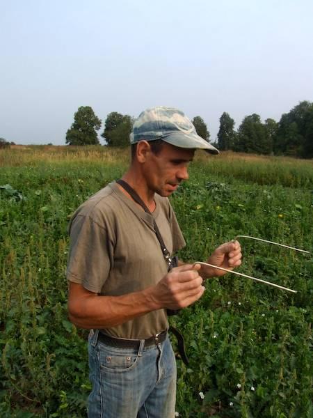 Как найти воду для скважины на участке самостоятельно по рельефу, растениям и состоянию грунта