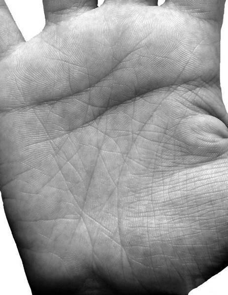 Линия аполлона на руке, ее влияние. что такое кольцо аполлона? | узнай свою судьбу