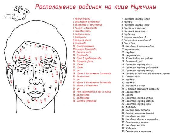 Что означают родинки на лице у женщин и мужчин