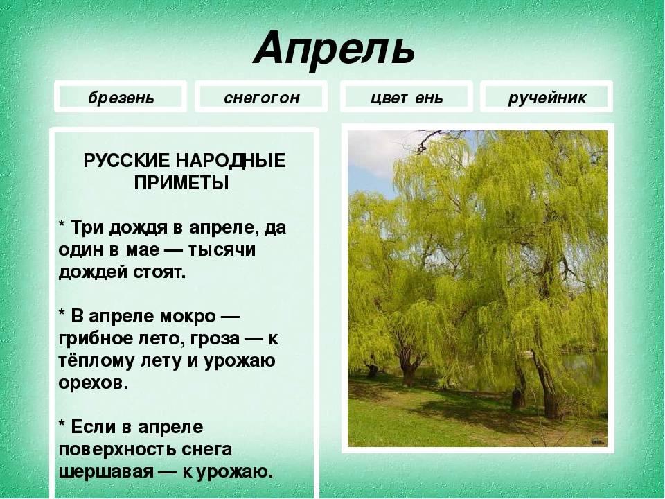 Народный календарь: приметы, традиции, обряды на апрель по дням
