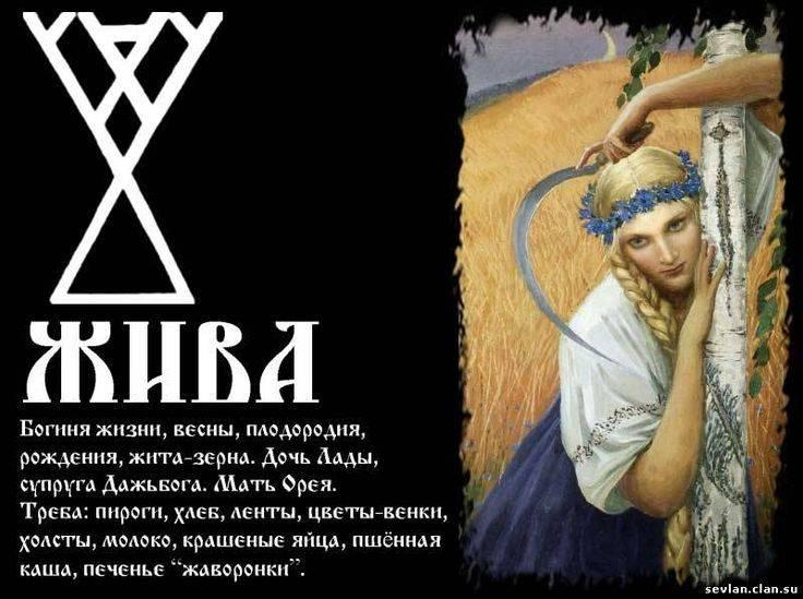 Славянские руны – значение русских рун и толкование при гадании с описанием