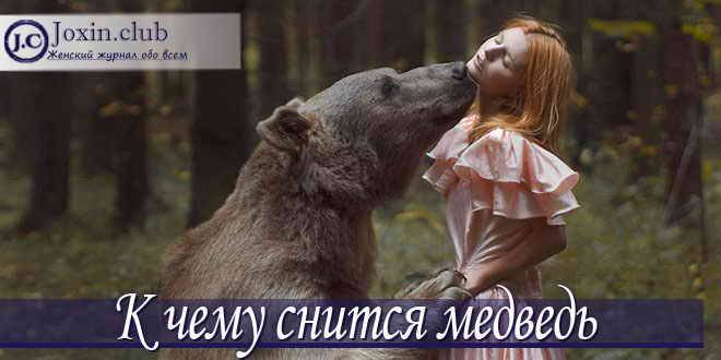К чему снится медвежонок. сонники про медвежат во сне