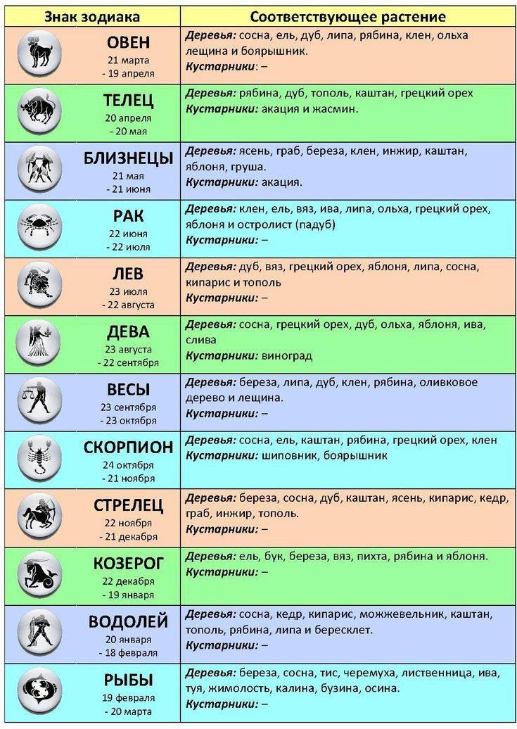 Гороскоп в помощь: как выбрать подходящий подарок для каждого знака зодиака