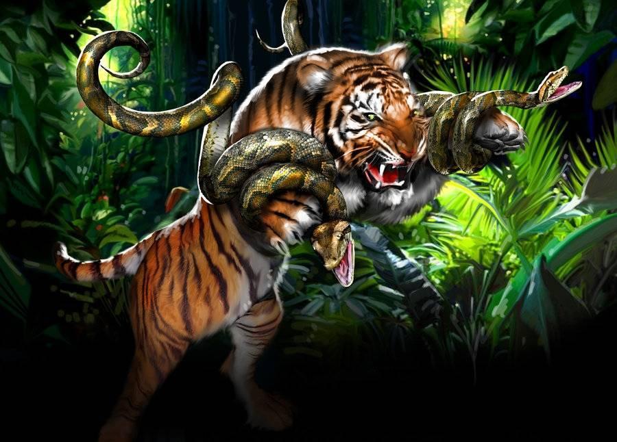 Огненный тигр и змея совместимость