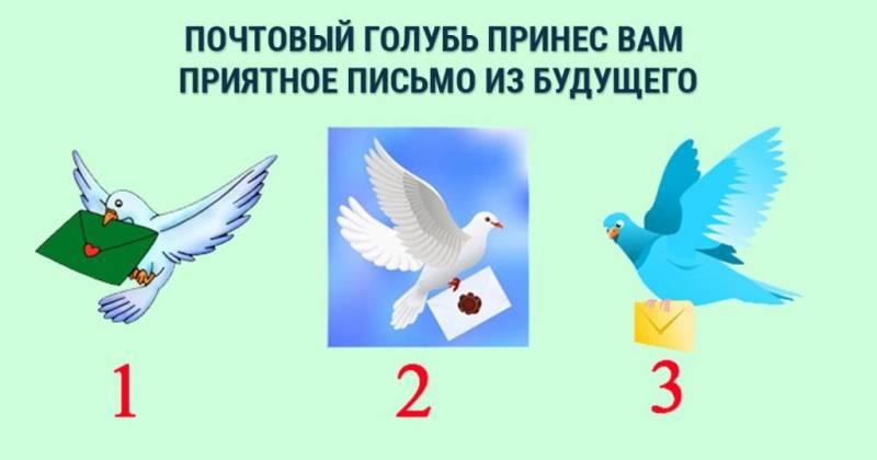 Гадание «почтовая голубка»