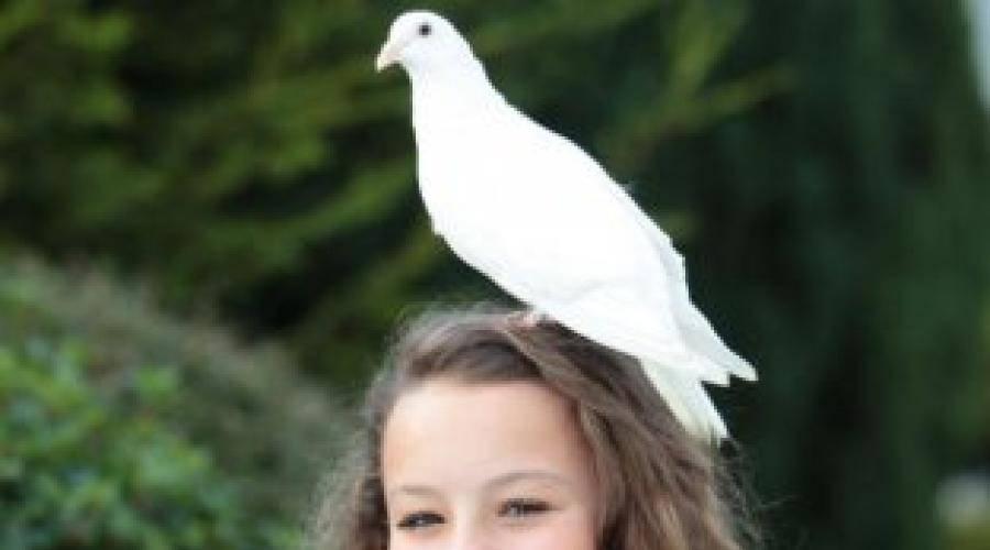 Примета — птица накакала