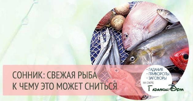 К чему снится дохлая рыба: толкование по сонникам
