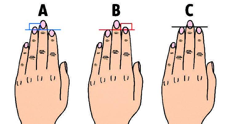 Большой палец, хиромантия, его значение в характеристике человека | узнай свою судьбу