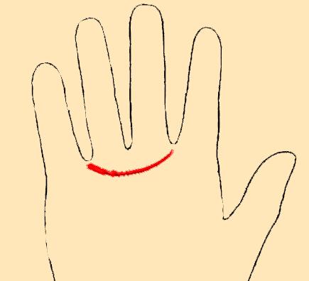 Пояс венеры на руке: значение и расшифровка. как хиромантия толкует пояс венеры