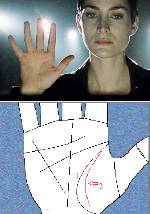 Значение линии марса на руке