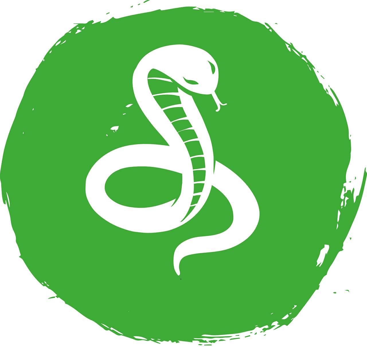 Восточный (китайский) гороскоп на 2013 год Змеи