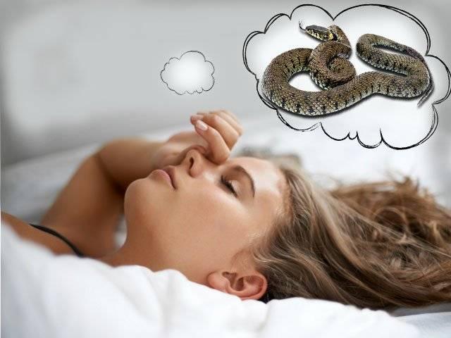 Змея убивает человека