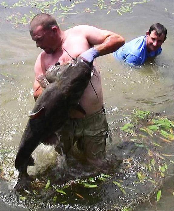 Рыбу ловить