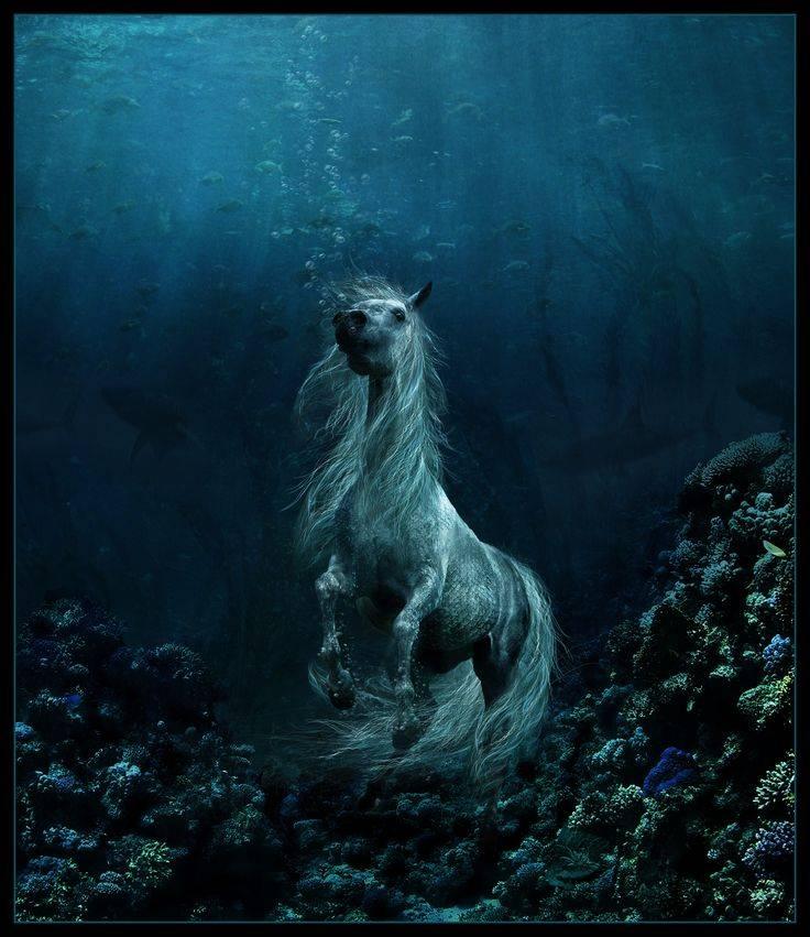 Агиски — водяные лошади из кельтской мифологии